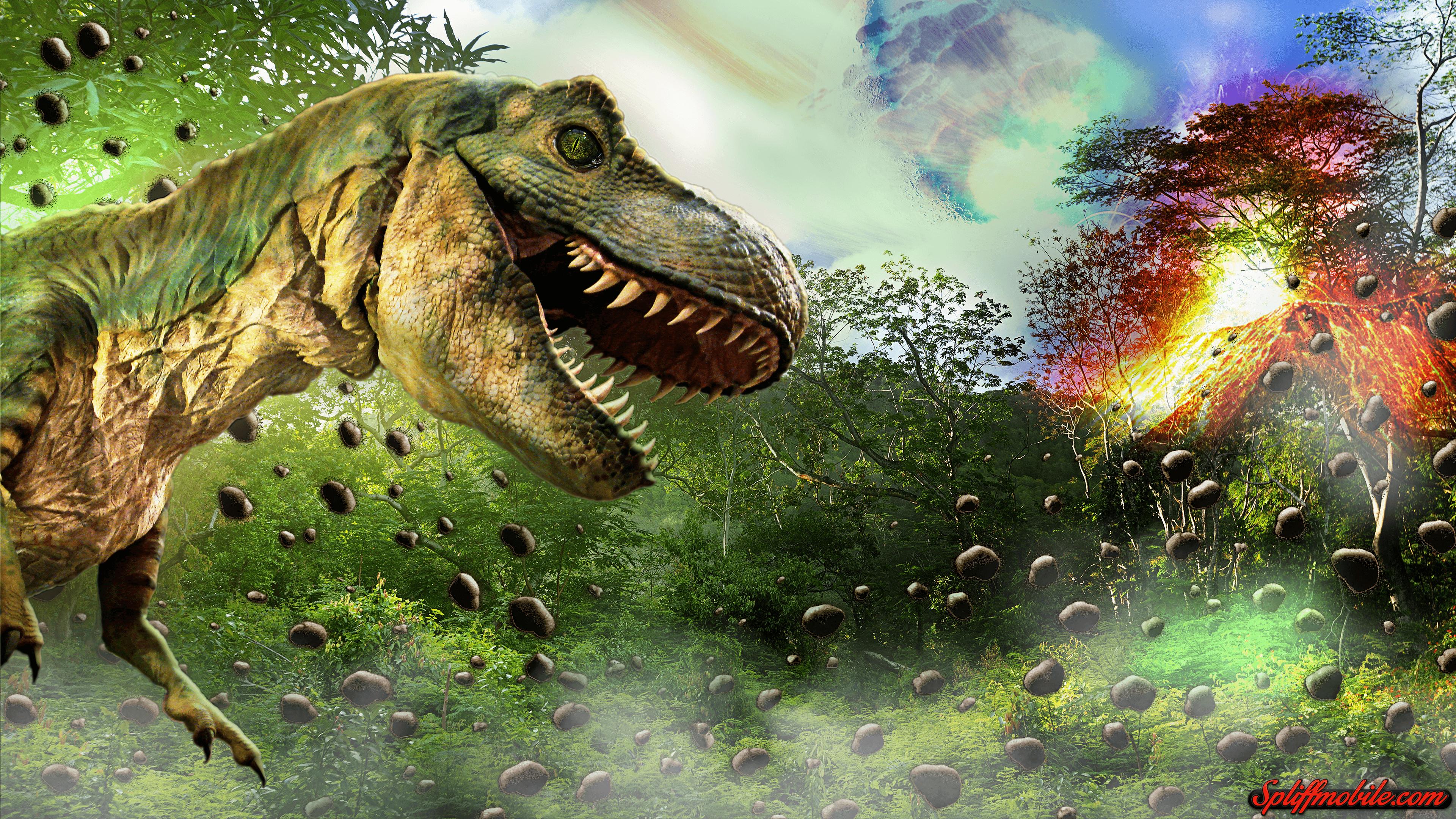 Dinosaur 4K Wallpapers - Top Free Dinosaur 4K Backgrounds