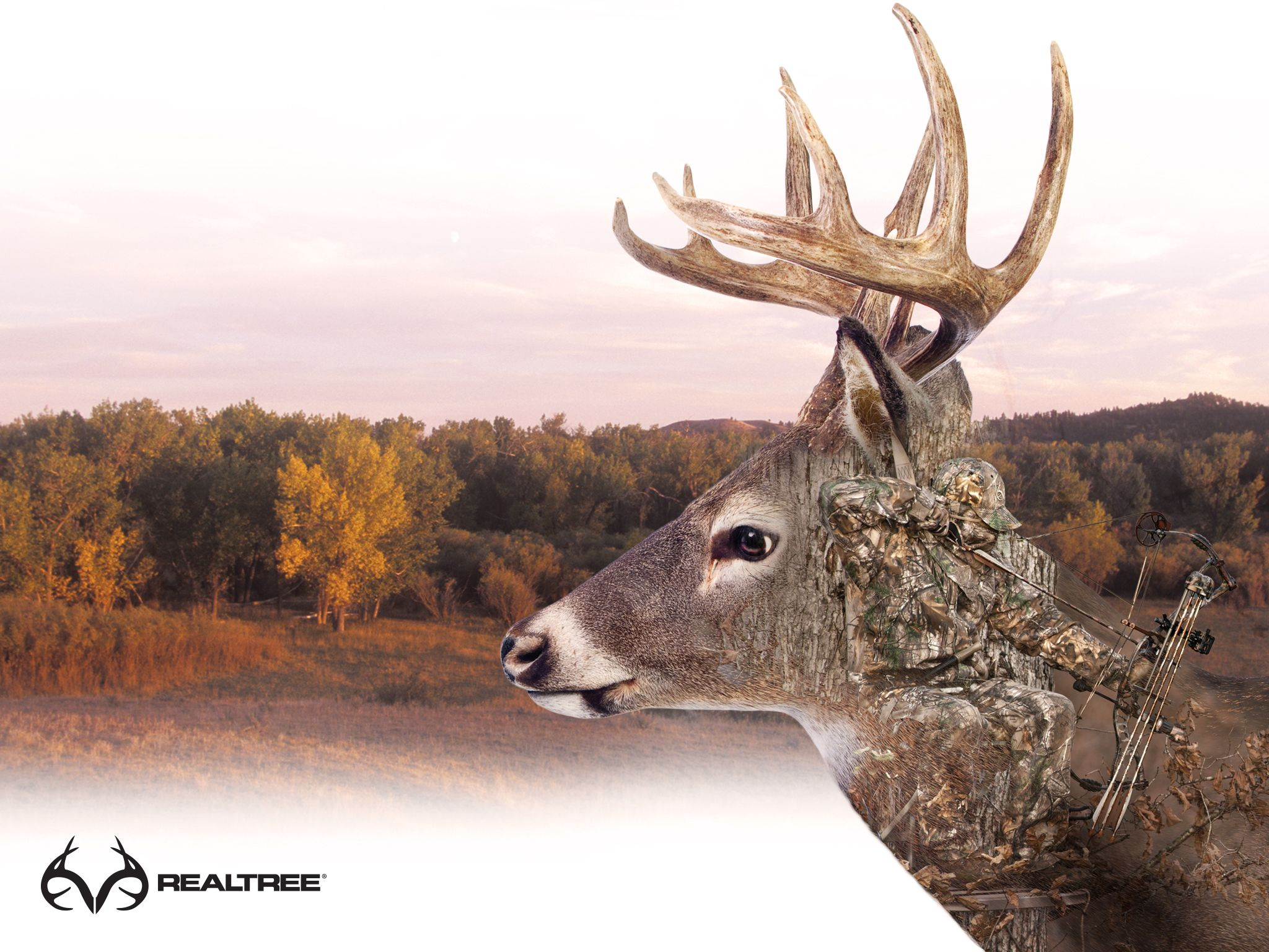 realtree buck wallpapers top free