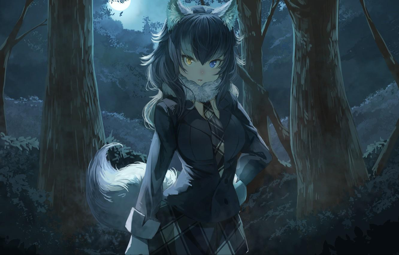 Wolf Anime Girl Wallpapers   Top Free Wolf Anime Girl Backgrounds ...