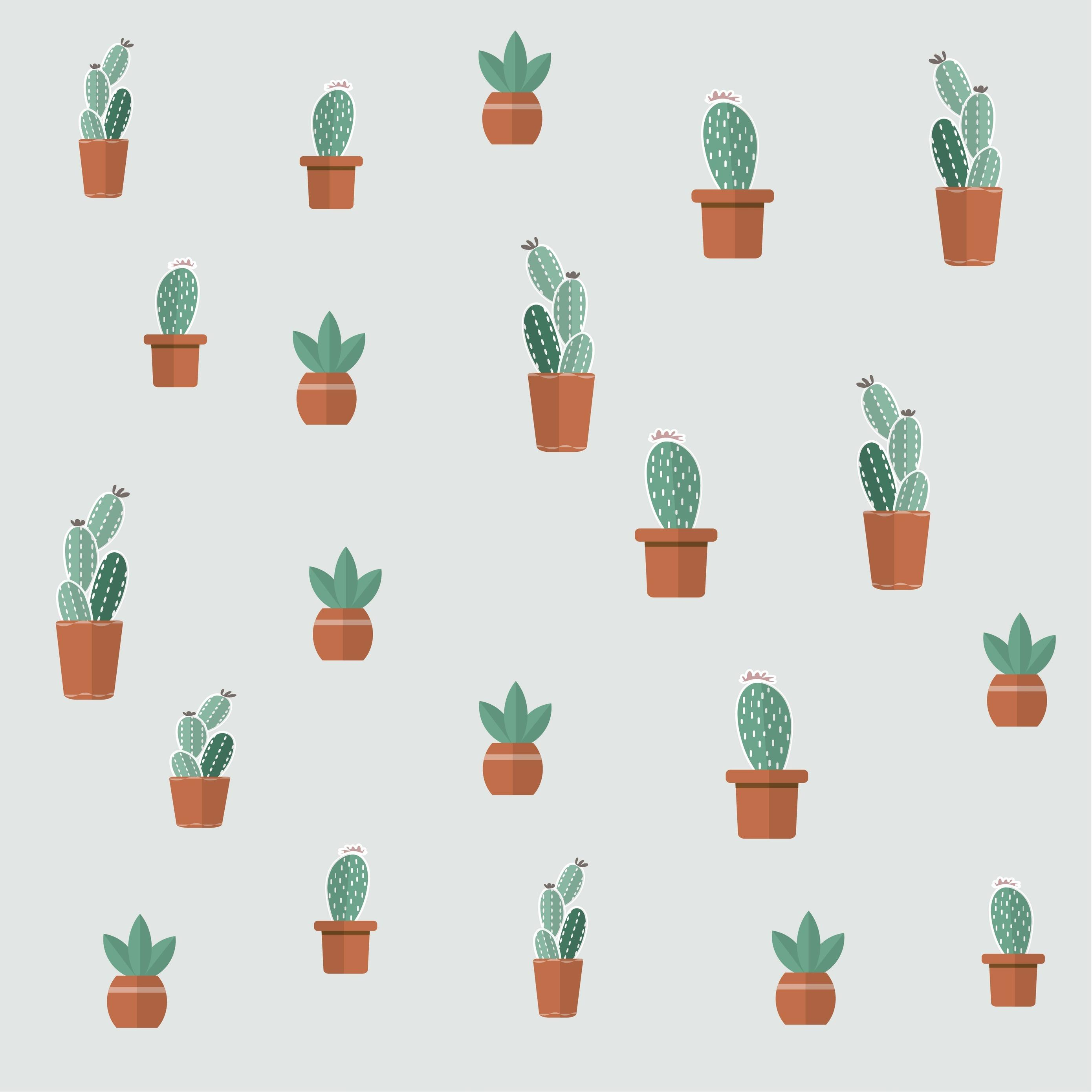 Cute Aesthetic Succulent Wallpapers Top Free Cute Aesthetic Succulent Backgrounds Wallpaperaccess