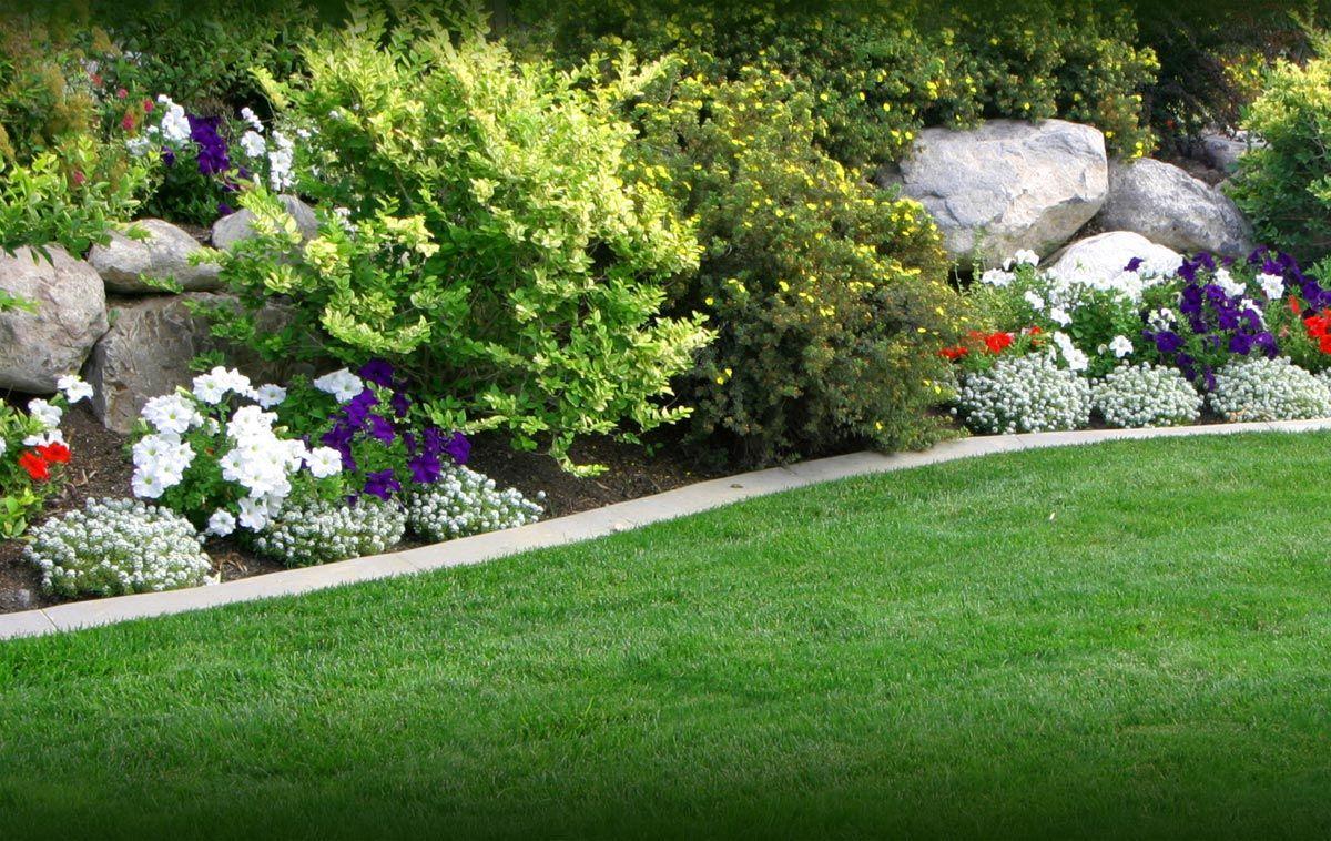 Backyard Gardens Wallpapers Top Free Backyard Gardens Backgrounds Wallpaperaccess