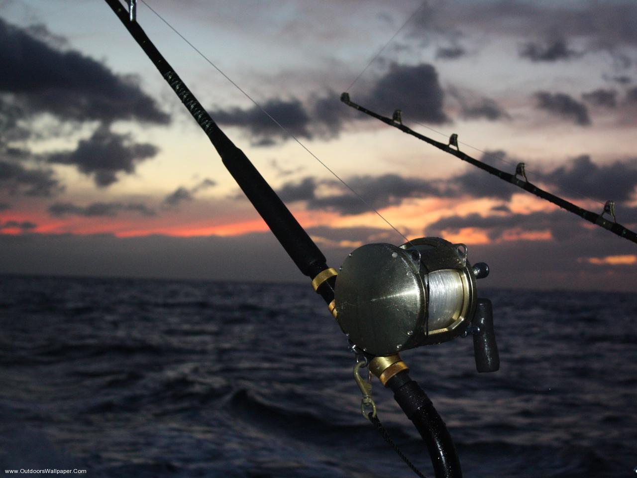 Fishing Wallpapers Top Free Fishing Backgrounds Wallpaperaccess