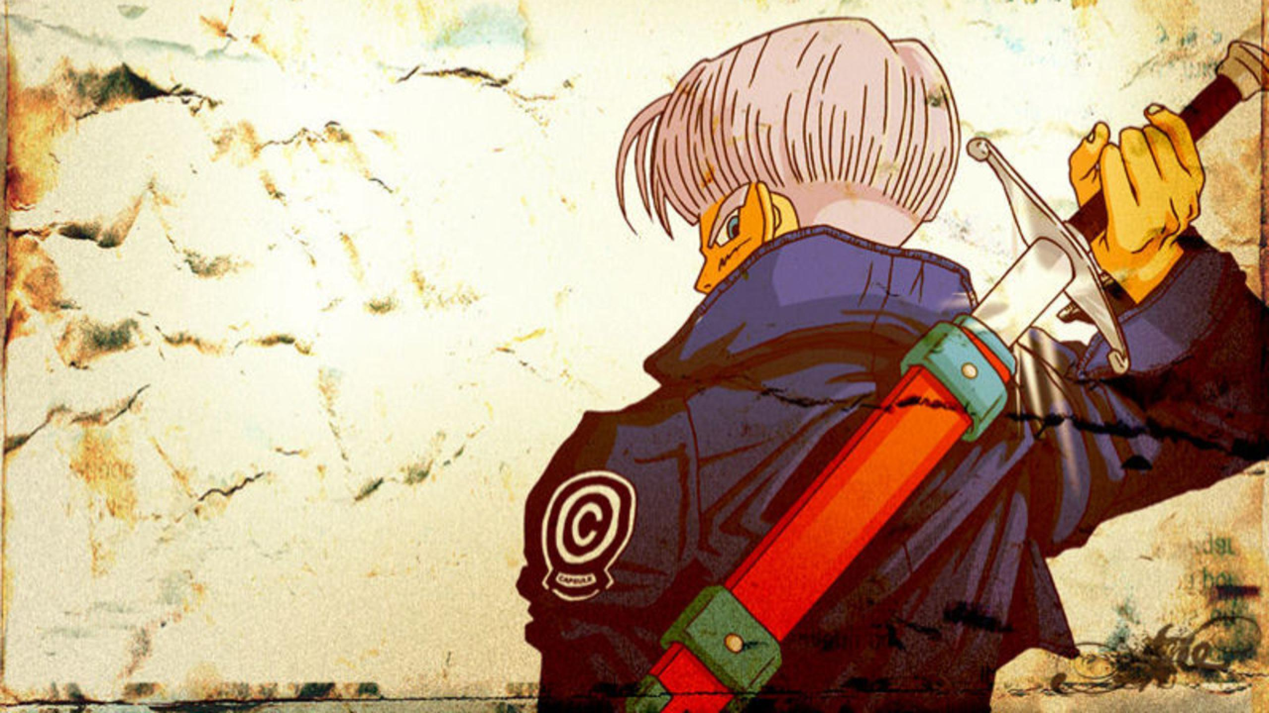 Trunks Wallpapers Top Free Trunks Backgrounds