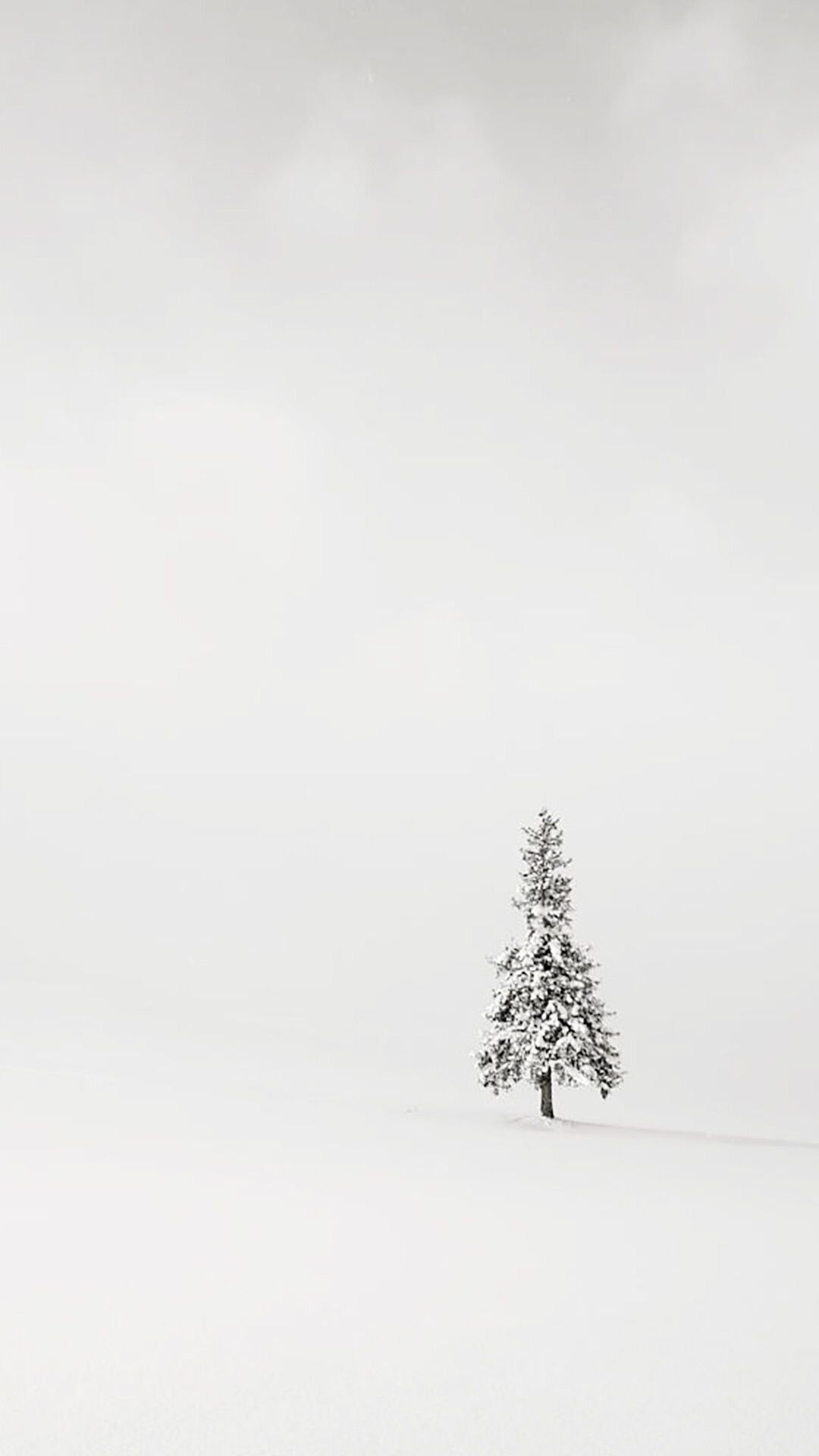White Minimalist Iphone Wallpapers Top Free White