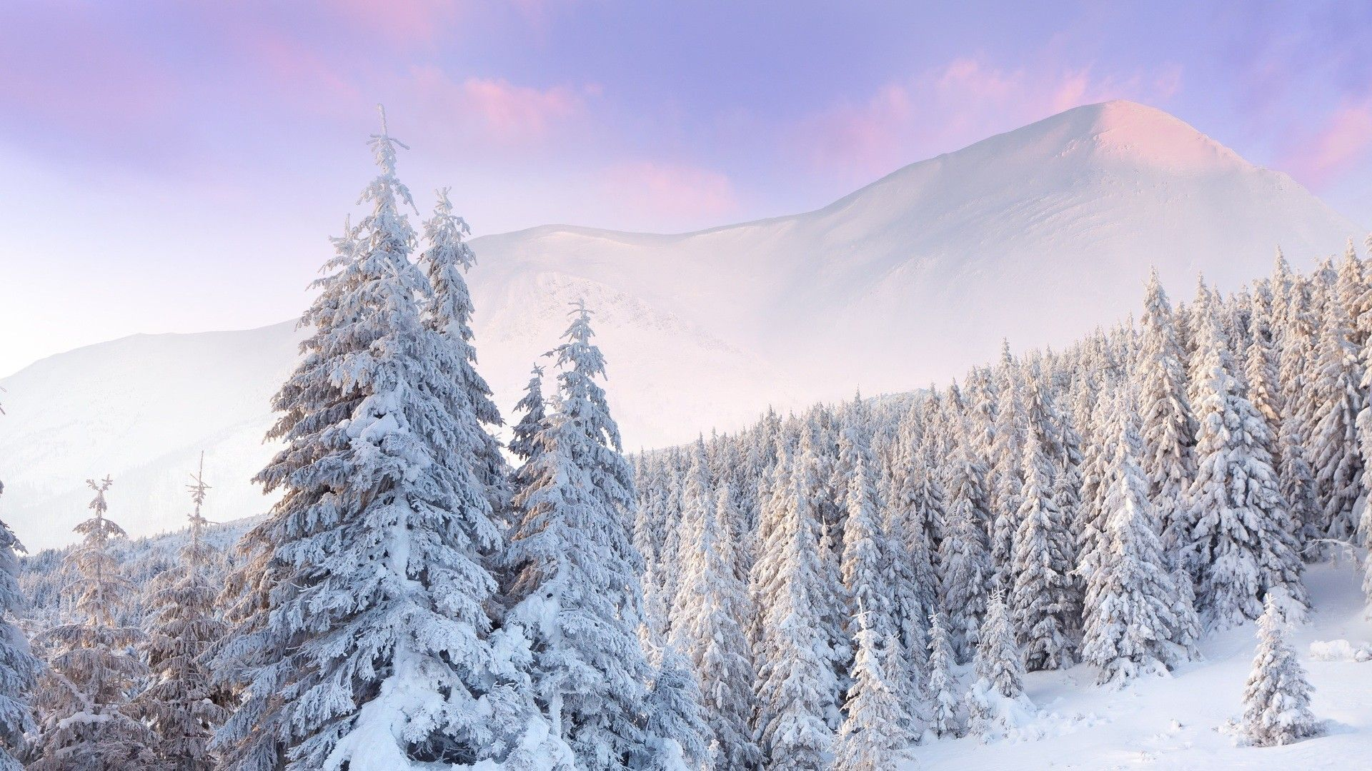 Pristine Snow 4k Wallpapers Top Free Pristine Snow 4k Backgrounds Wallpaperaccess