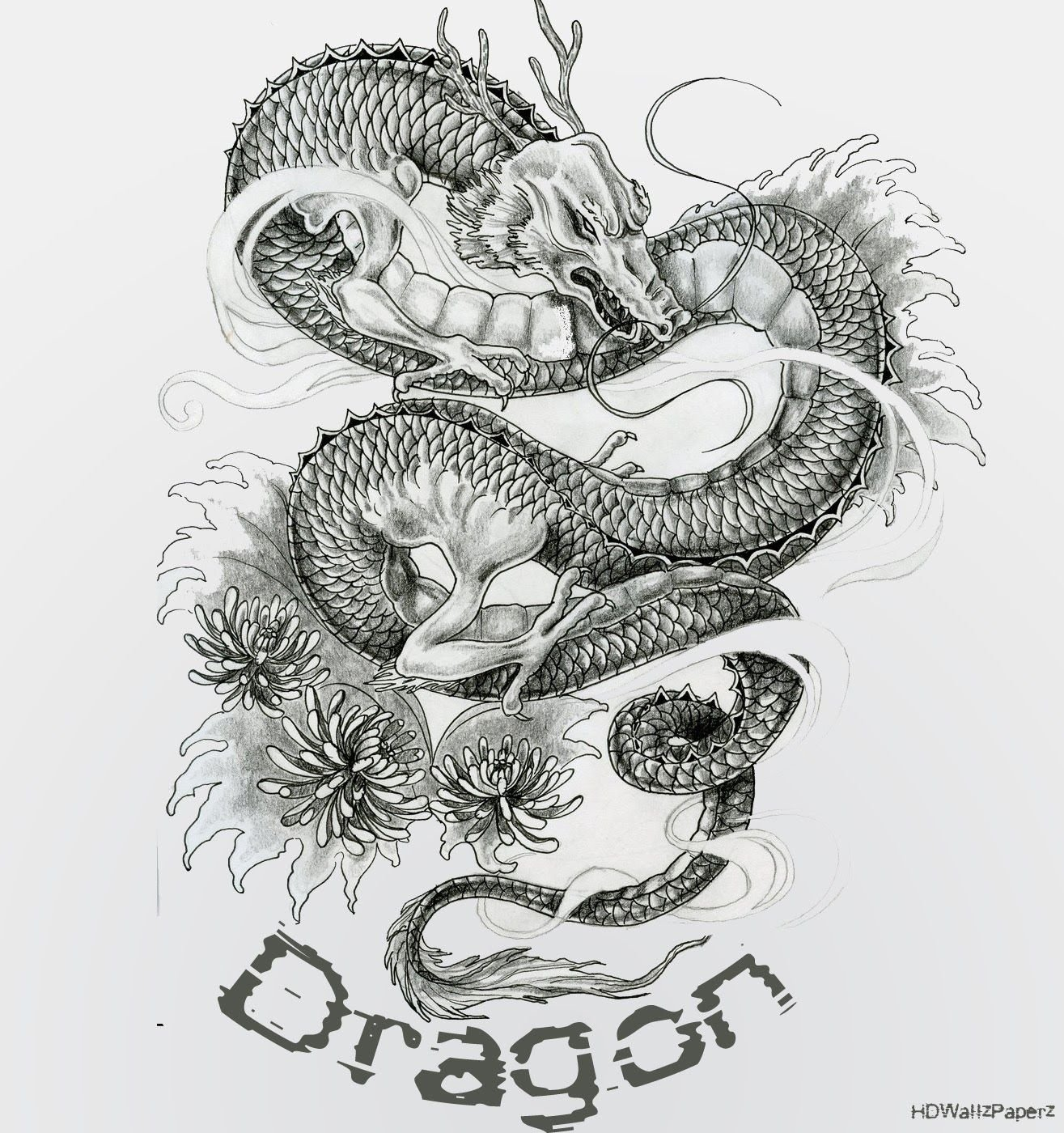 Dragon Tattoo Wallpapers Top Free Dragon Tattoo Backgrounds Wallpaperaccess