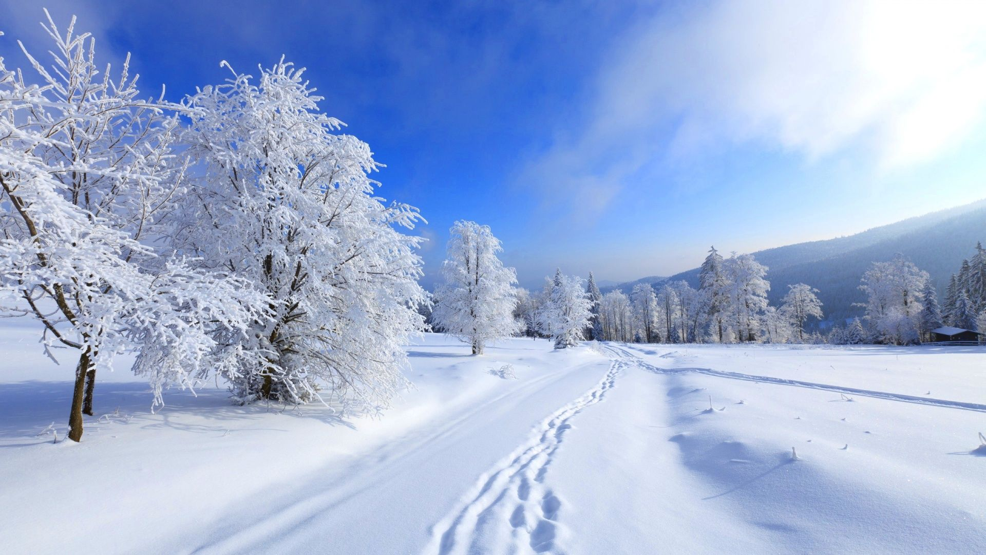 Winter Desktop Wallpapers Top Free Winter Desktop Backgrounds Wallpaperaccess