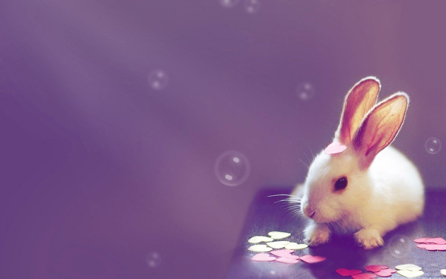 Cute Computer Wallpapers Top Free Cute Computer Backgrounds Wallpaperaccess