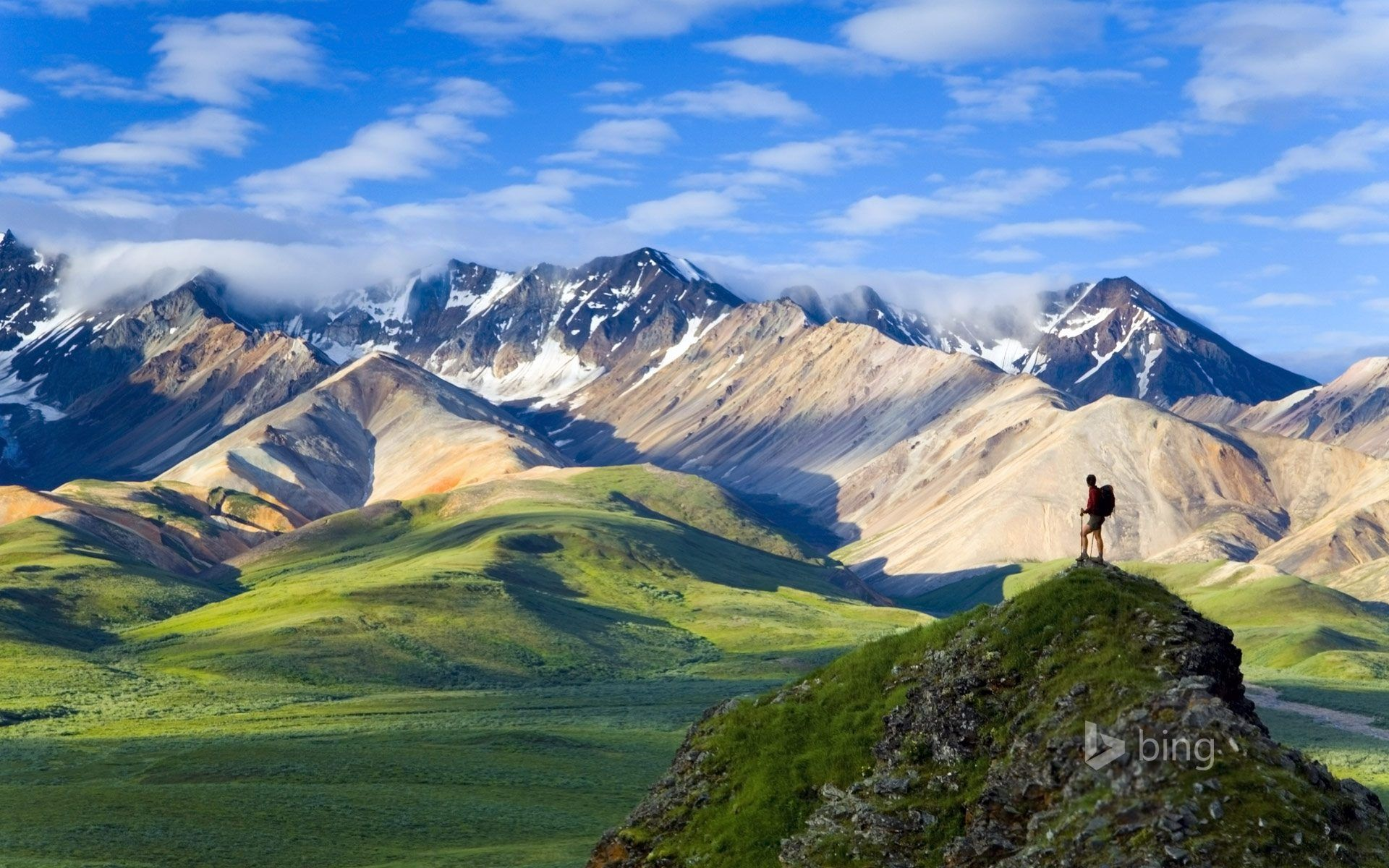 Denali National Park 4k Wallpapers Top Free Denali National Park