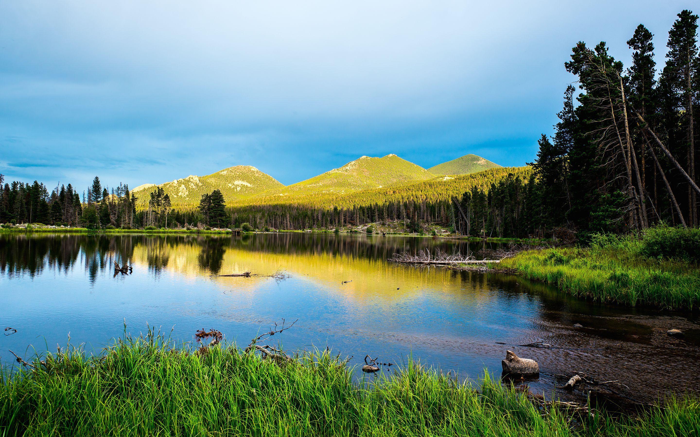 Denali National Park 4k Wallpapers Top Free Denali National Park