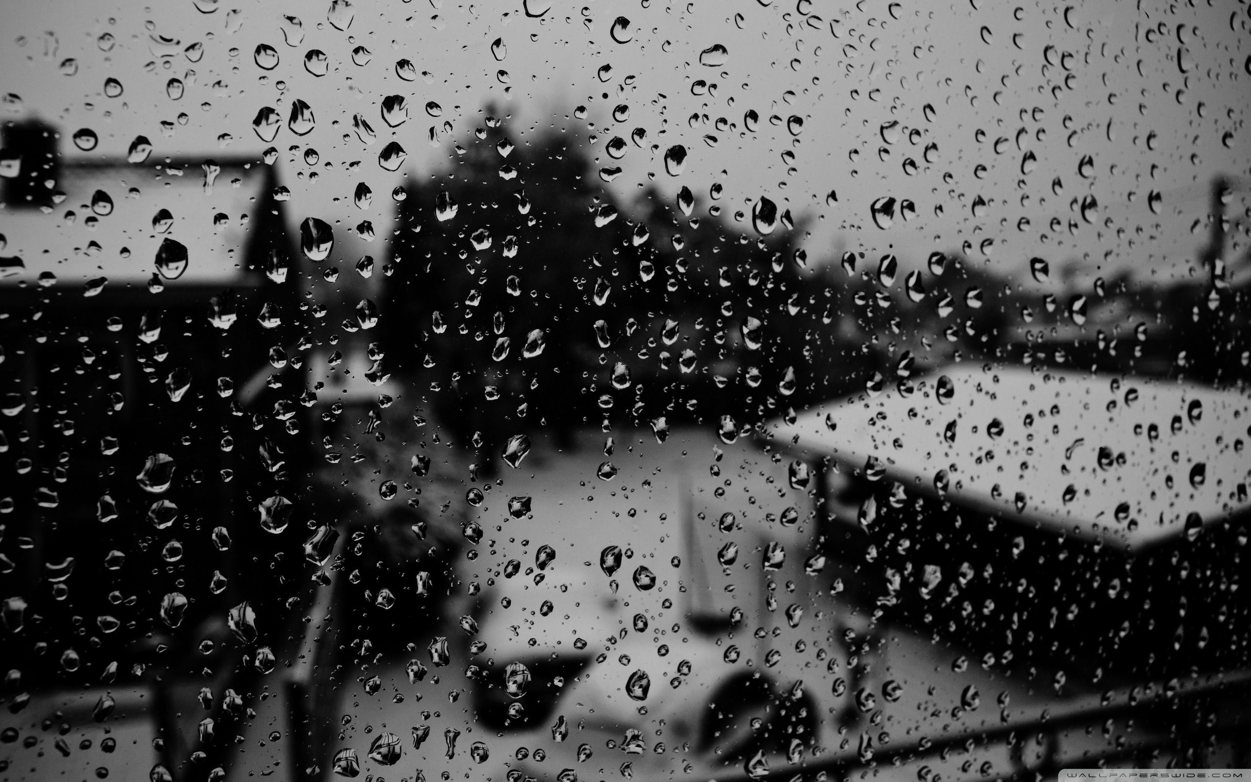 Raindrops Wallpapers Top Free Raindrops Backgrounds Wallpaperaccess