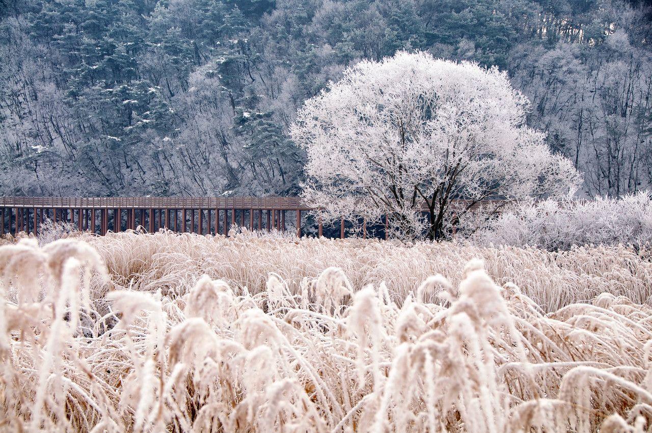 Korea in winter desktop wallpapers top free korea in - Winter tumblr wallpaper ...