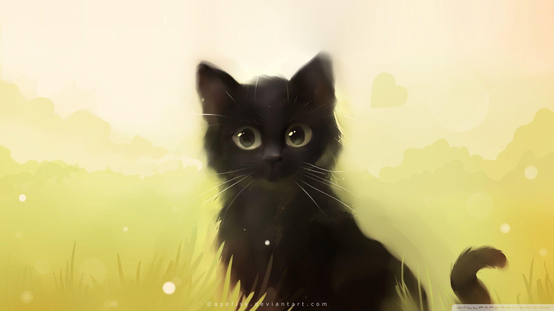 animated cat desktop wallpapers top