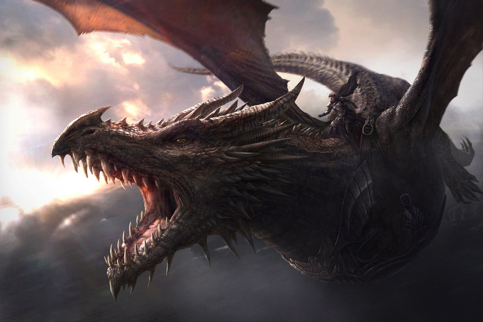 Game Of Thrones Dragons Wallpapers Top Free Game Of