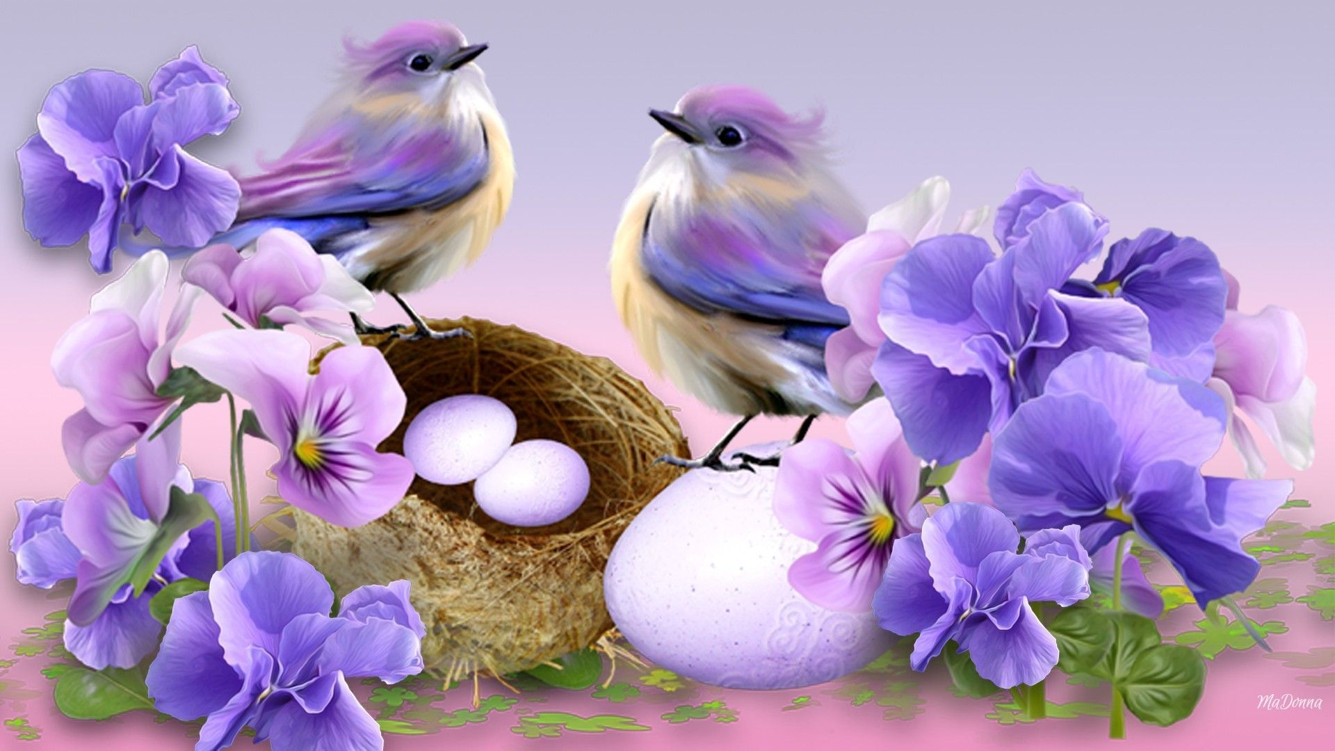 Beautiful Bird And Flower Wallpapers Top Free Beautiful Bird And Flower Backgrounds Wallpaperaccess We hope you enjoy these awesome flower field background images beautiful bird and flower wallpapers