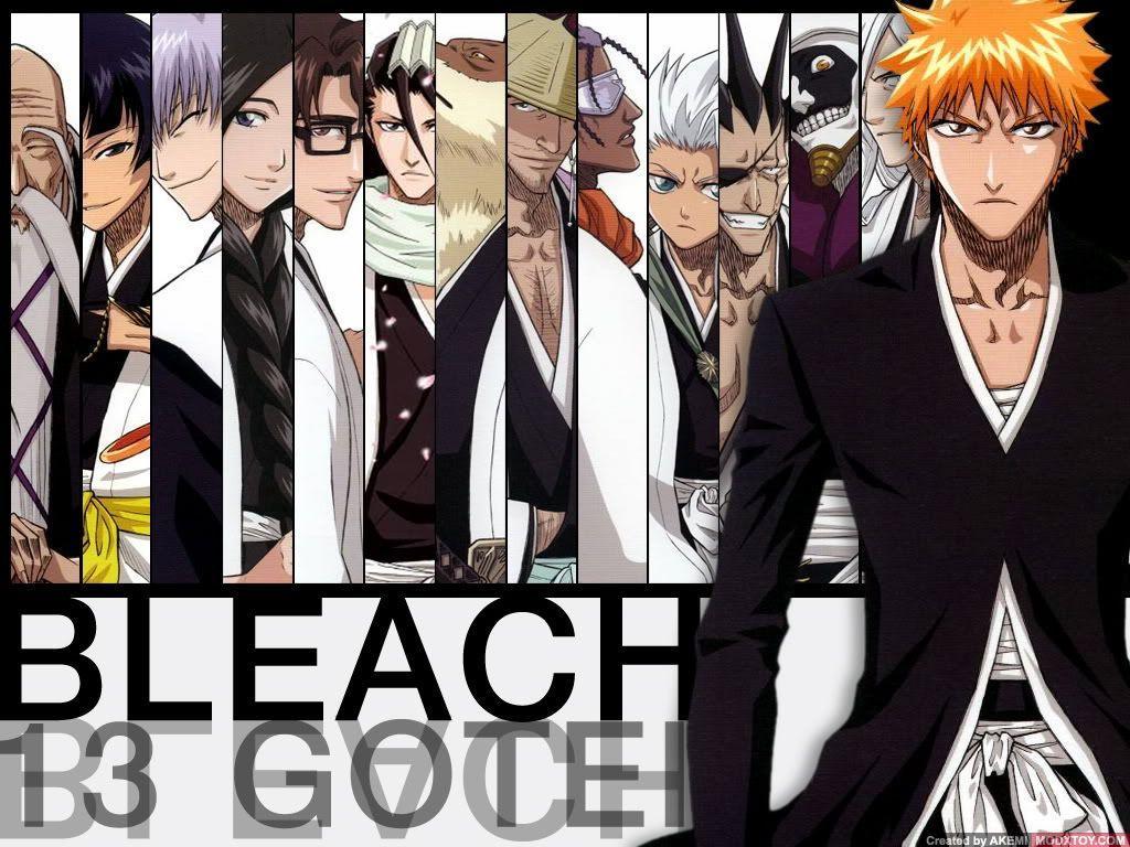Bleach 13 Court Guard Squads