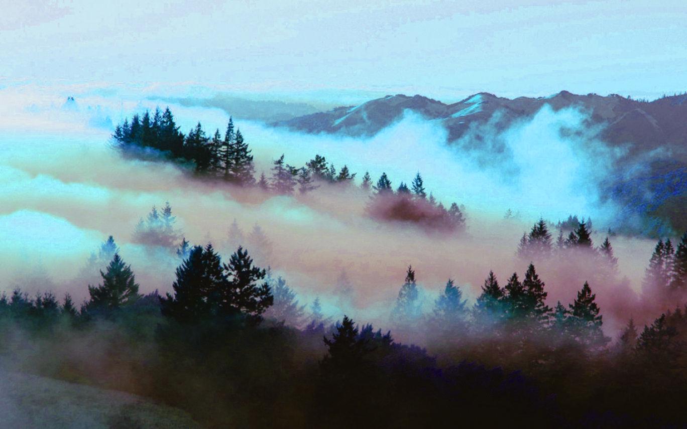 Tumblr Nature Desktop Wallpapers - Top ...