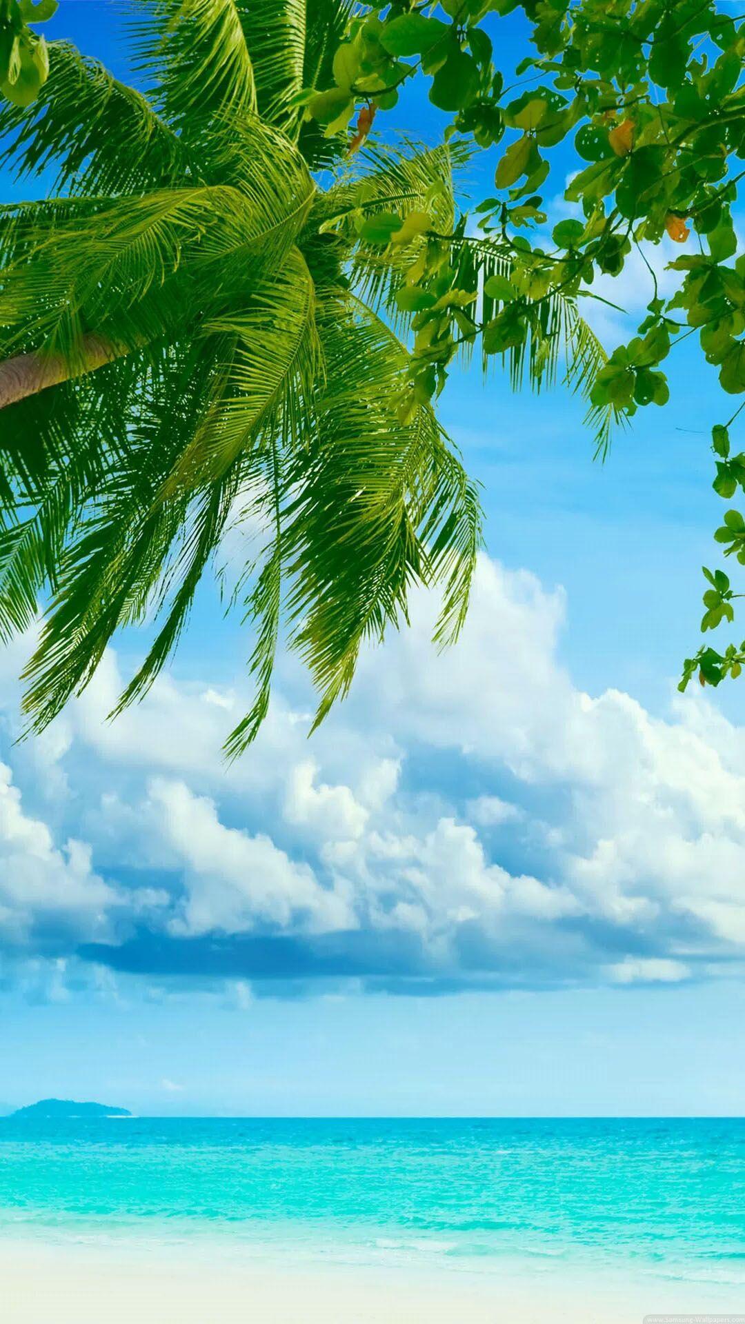Caribbean Iphone Wallpapers Top Free Caribbean Iphone