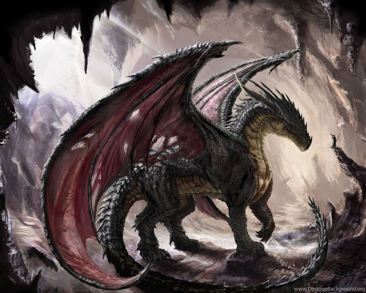 1080p dragon wallpapers top free 1080p dragon - Dragon backgrounds 1920x1080 ...