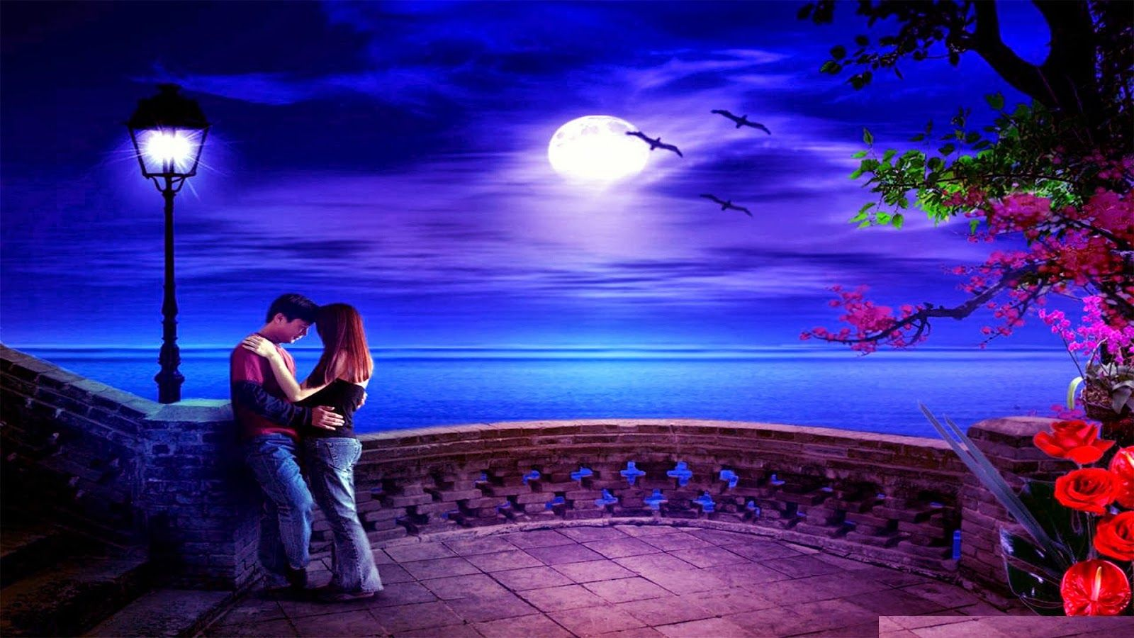 800+ Romantic Wallpaper Beautiful HD Terbaik