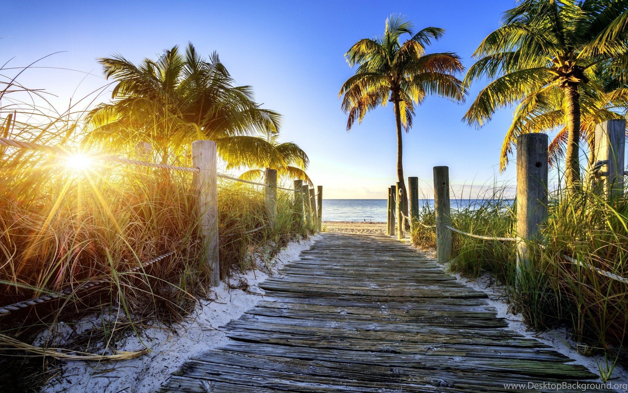 Wallpaper Naples Florida: Top Free Florida Backgrounds