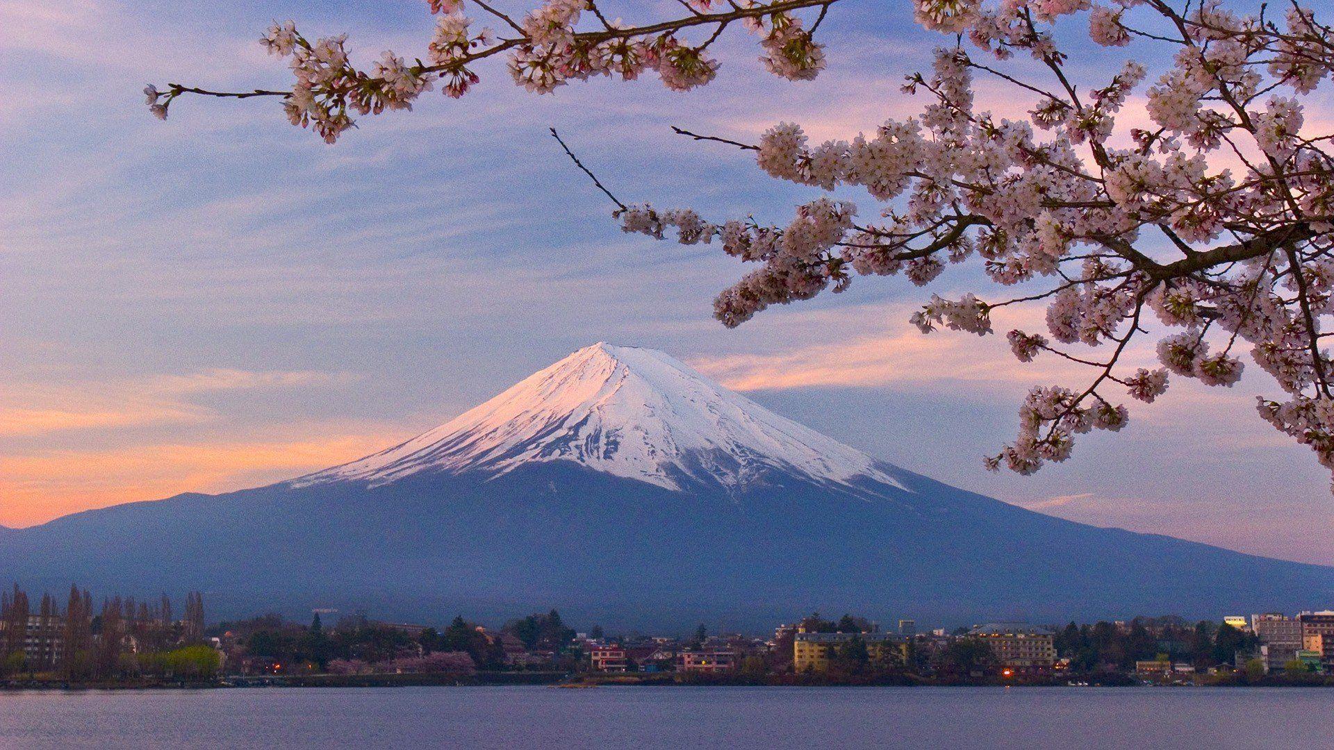 Mount Fuji Wallpapers Top Free Mount Fuji Backgrounds