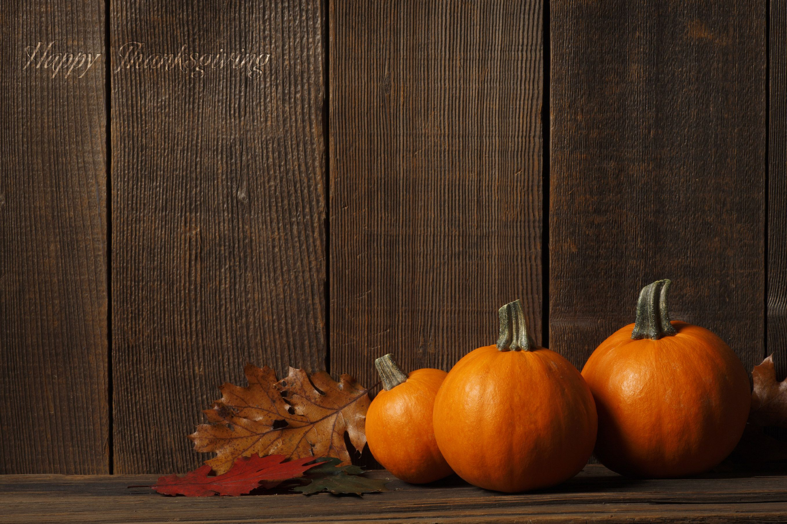 High Resolution Thanksgiving Wallpapers Top Free High