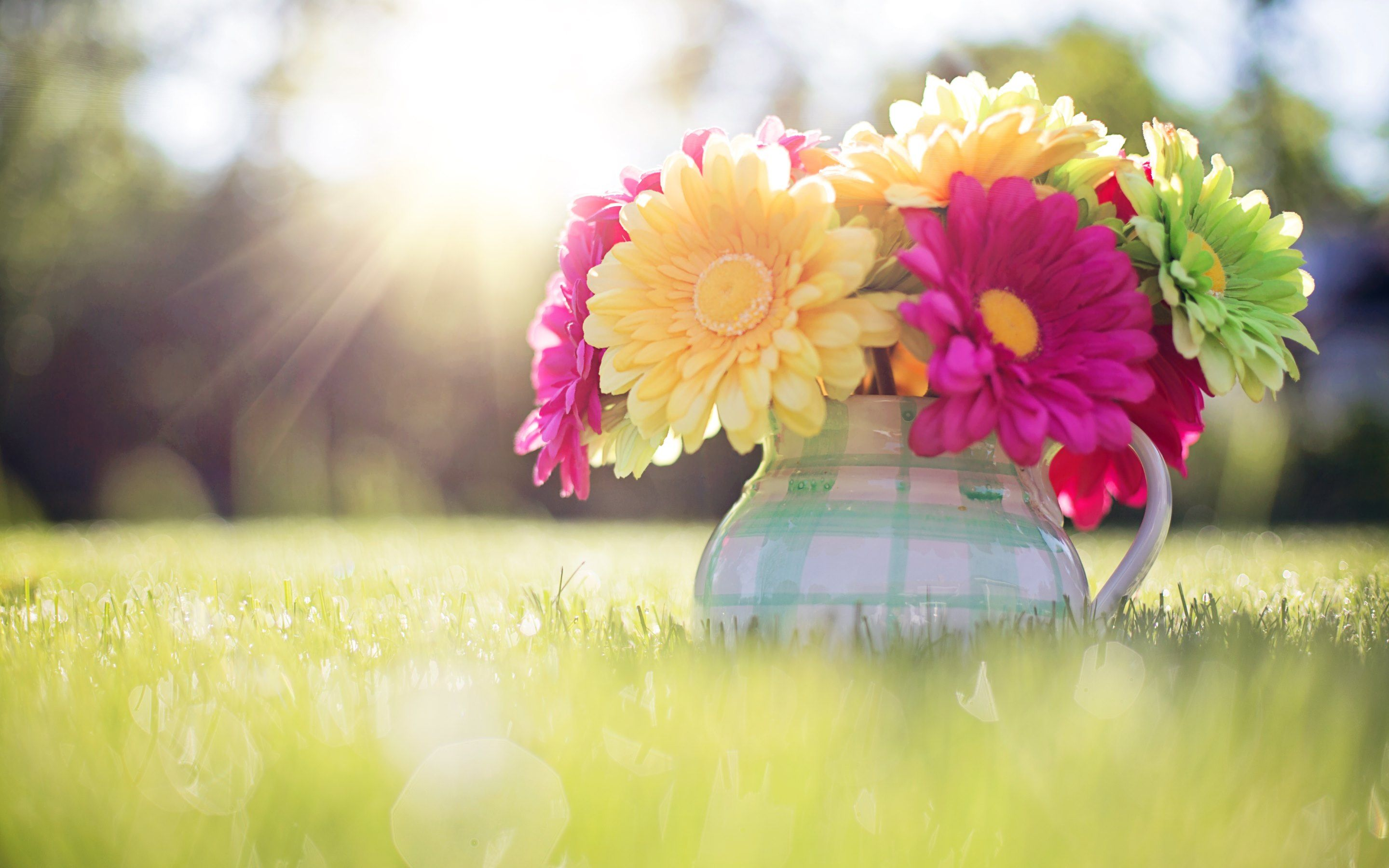 Spring Wallpapers Top Free Spring Backgrounds