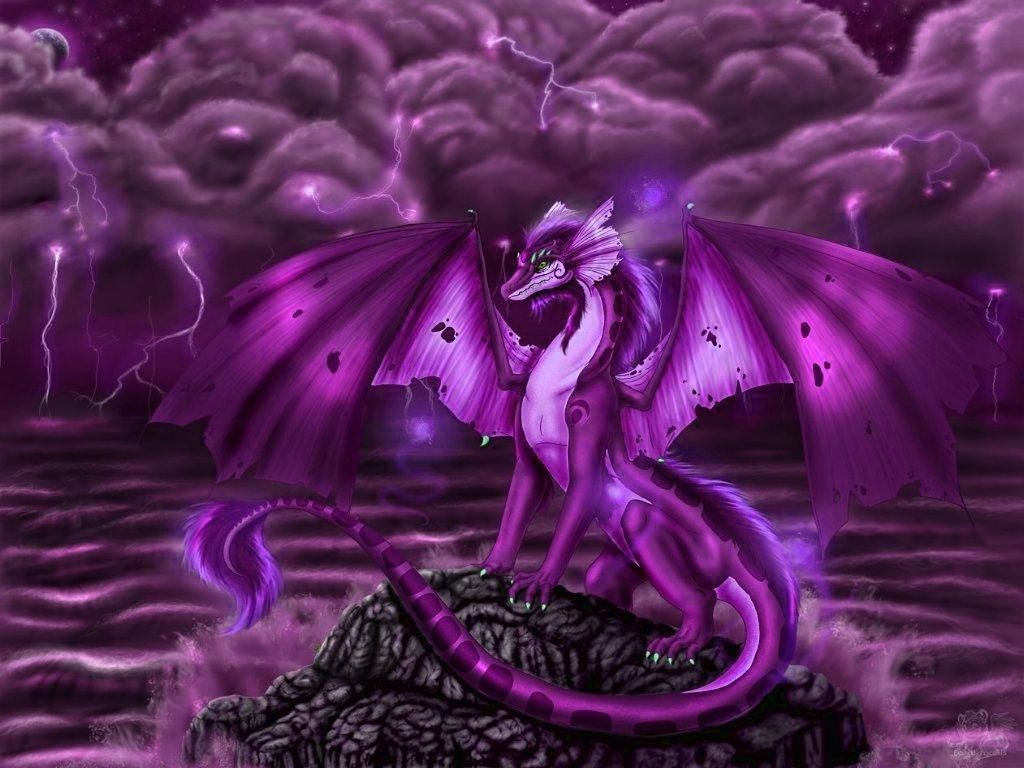 3040x1839 Dragon Full Hd Wallpaper And Background Image 3040x1839 Id67966