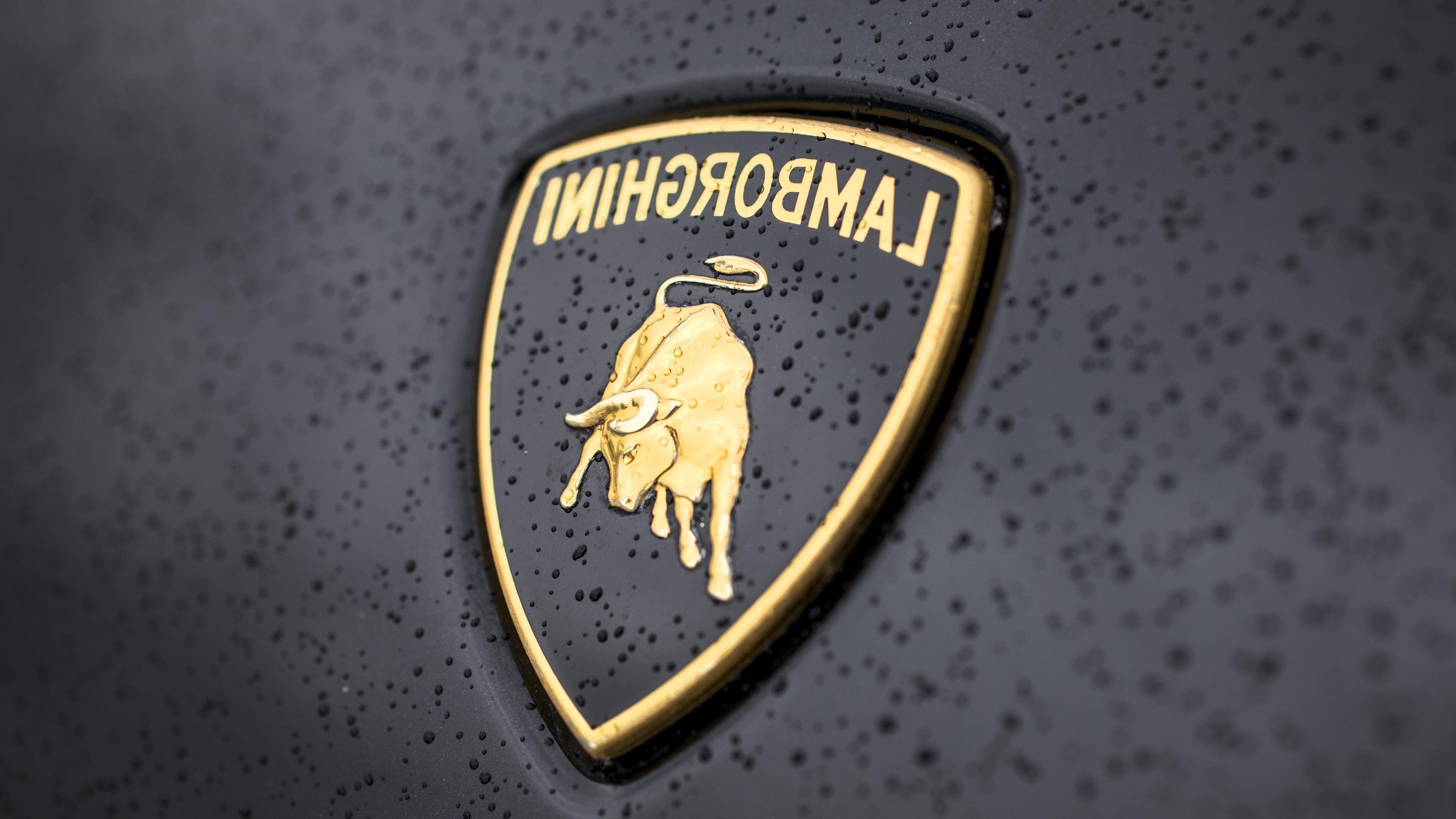 lamborghini logo wallpapers top free lamborghini logo
