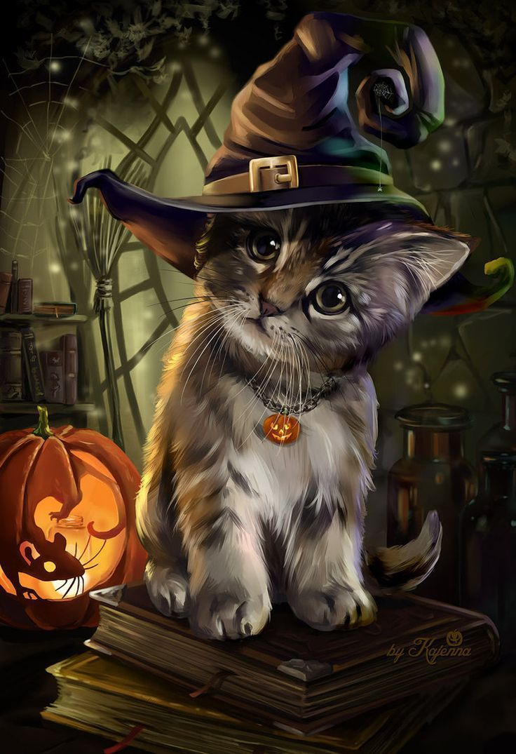 Cute Halloween Cats Wallpapers Top Free Cute Halloween Cats Backgrounds Wallpaperaccess