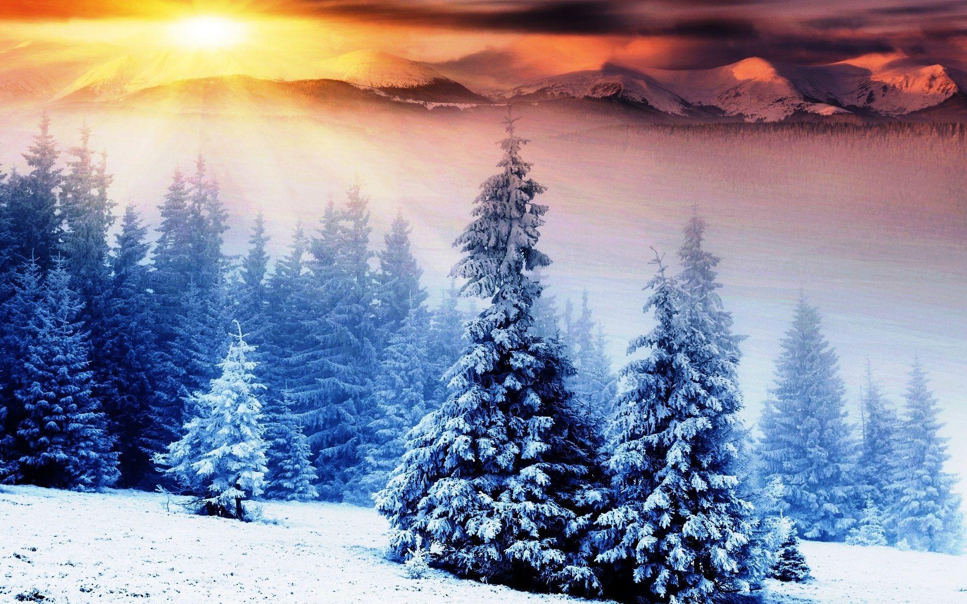 Winter Sunrise Desktop Wallpapers Top Free Winter Sunrise