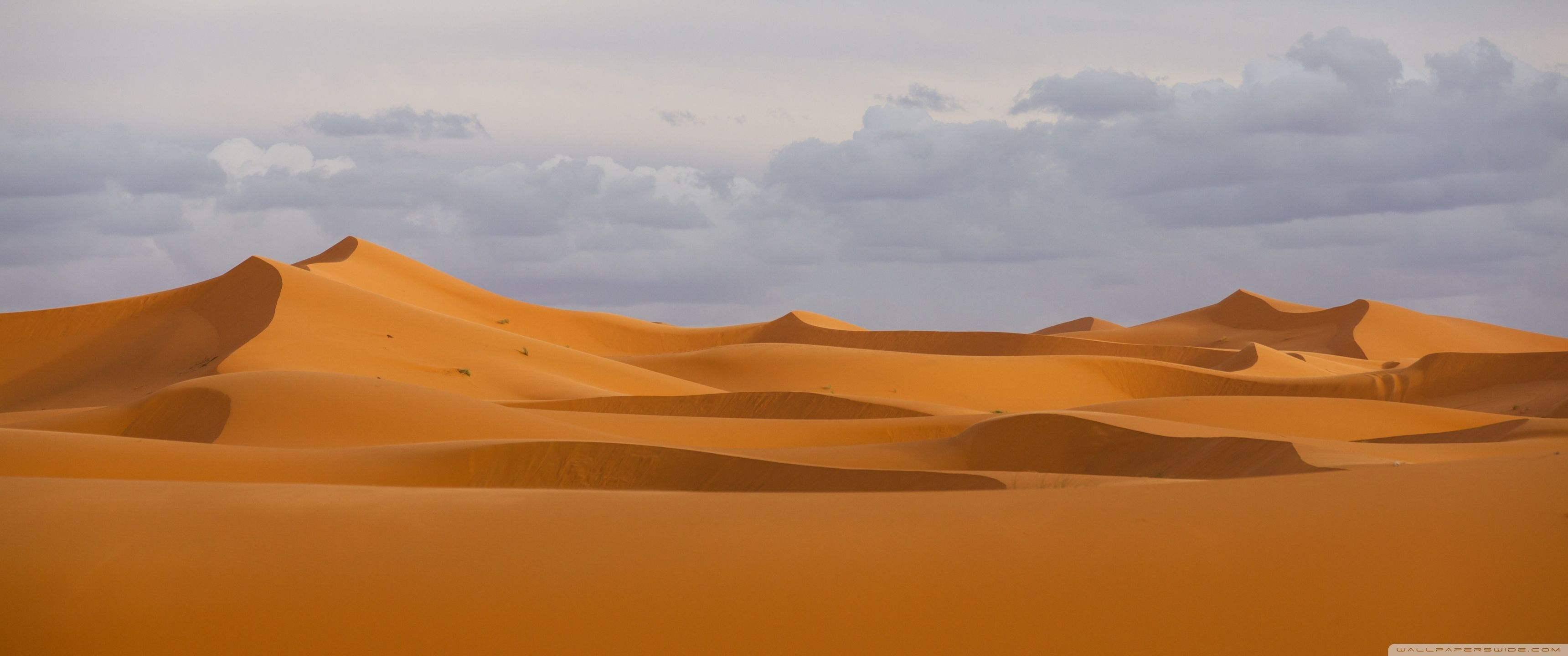 Desert Wallpapers Top Free Desert Backgrounds