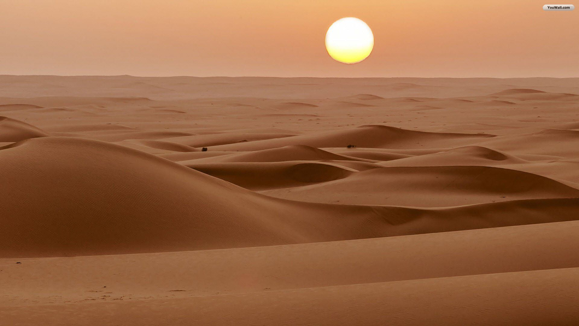 Sahara Desert Wallpapers Top Free Sahara Desert