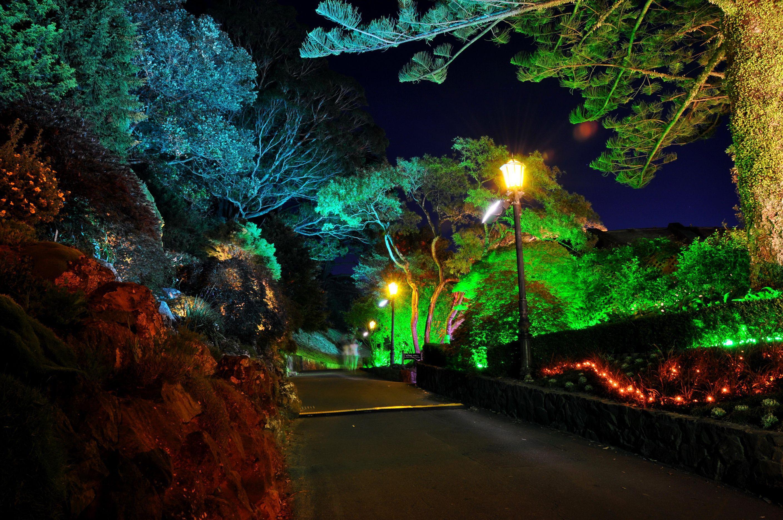 Night Garden Wallpapers Top Free Night Garden Backgrounds