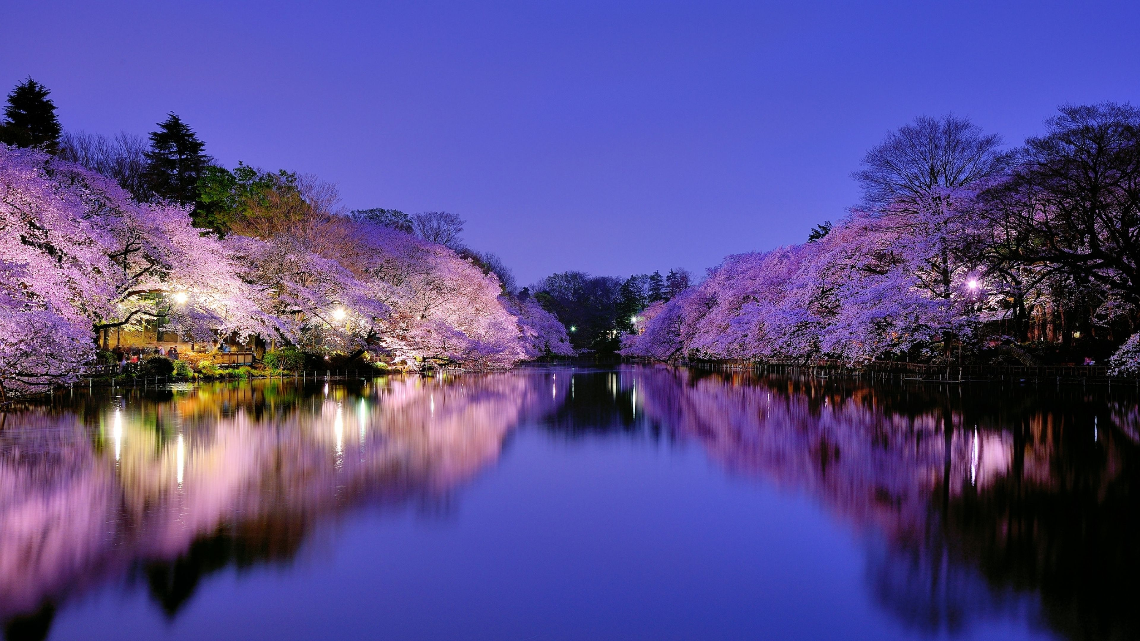 Japan 4K Ultra HD Wallpapers - Top Free Japan 4K Ultra HD