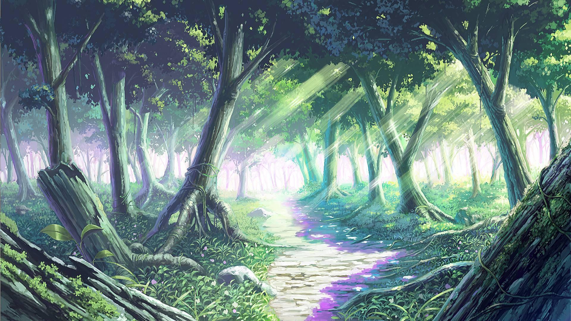 Šuma 516813