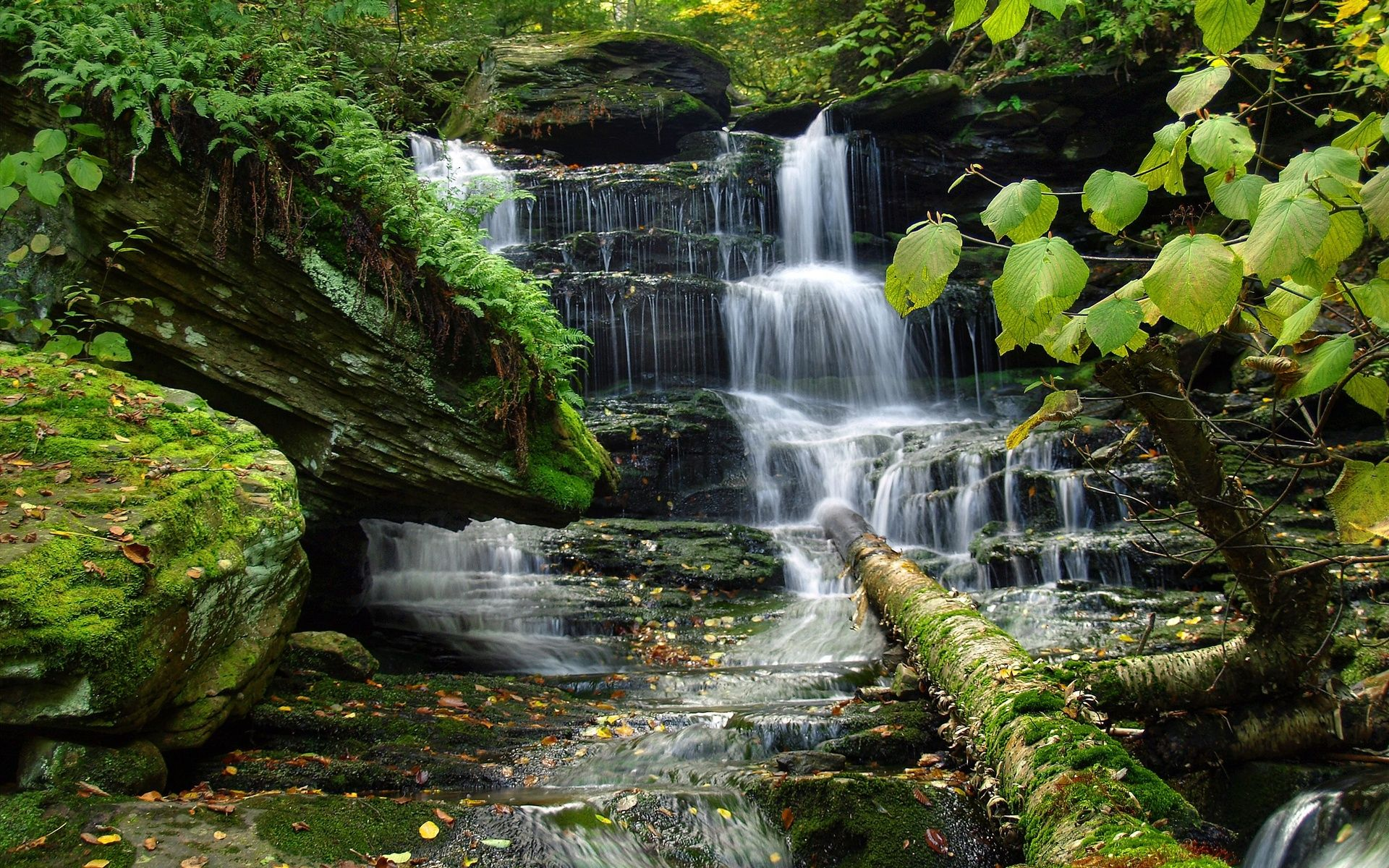 Zen waterfall wallpapers top free zen waterfall - Nature wallpaper of waterfall ...