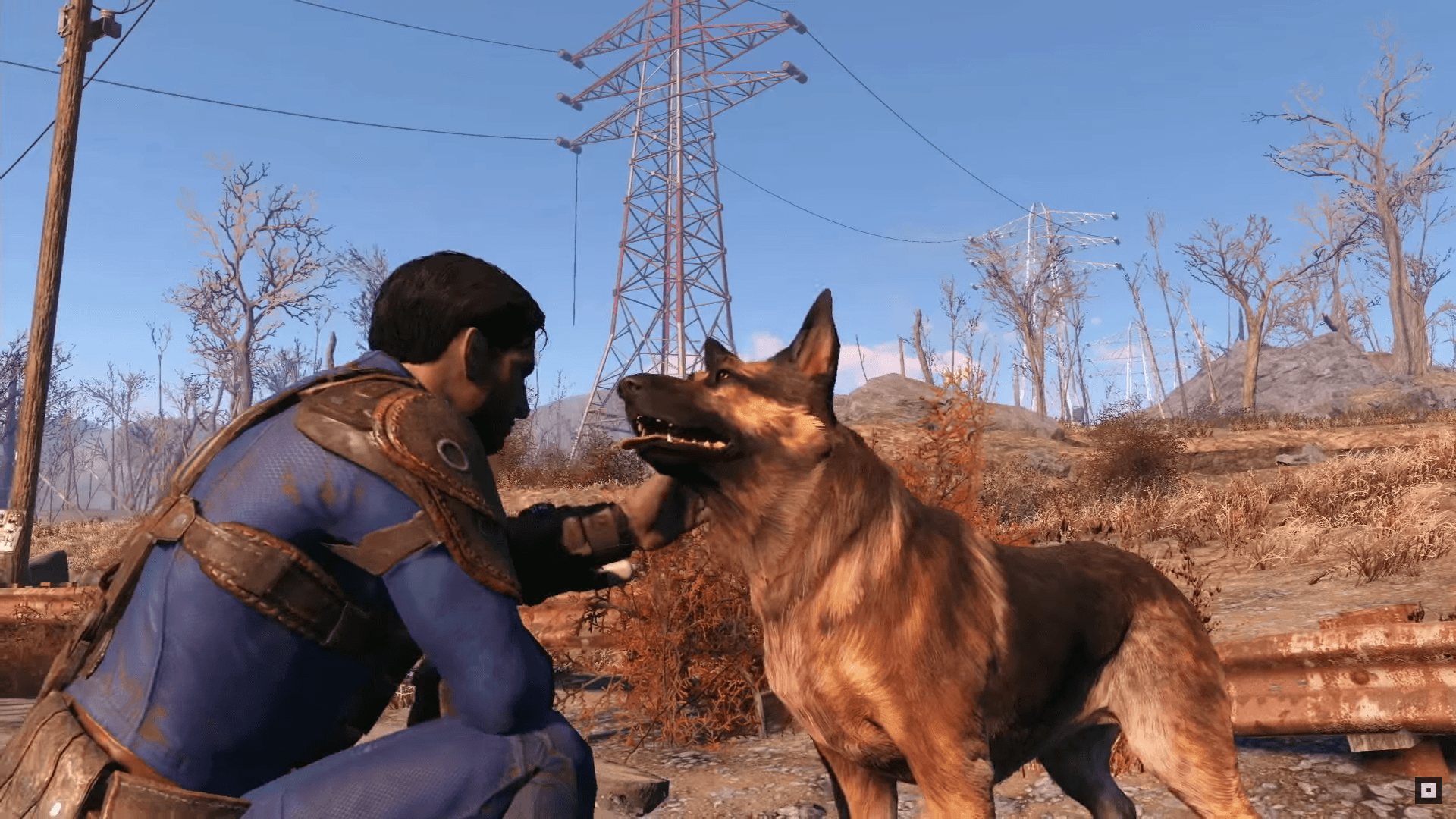 Dog Meat Fallout 4 4K Wallpapers - Top Free Dog Meat Fallout