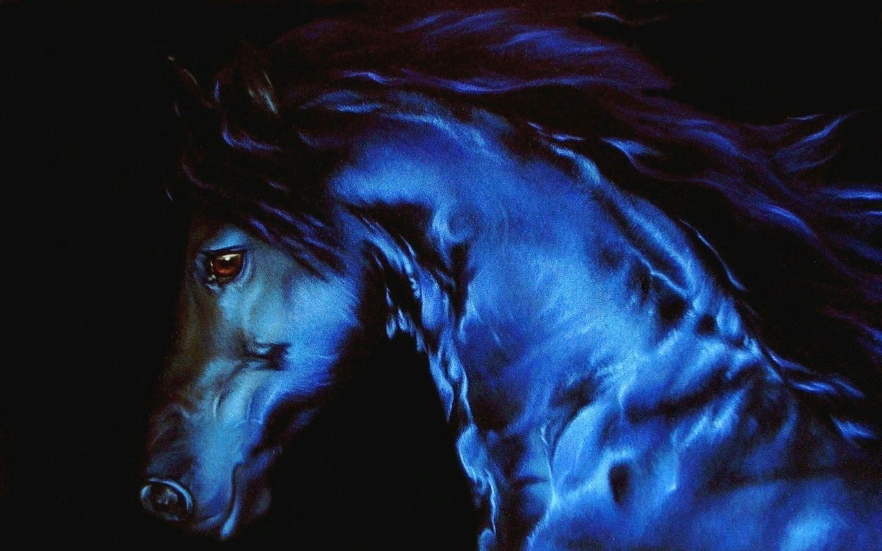 Neon Horse Wallpapers Top Free Neon Horse Backgrounds Wallpaperaccess