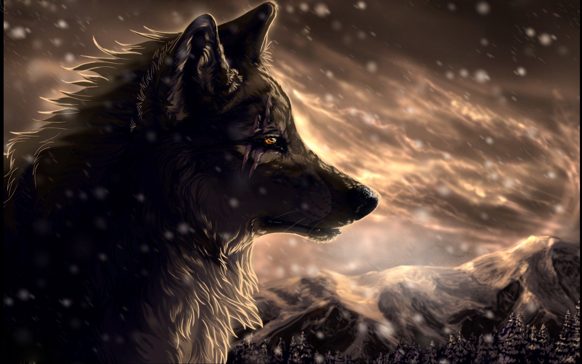 X Cool Anime Wolf Wallpapers  Images  C B Download  C B X Cool Anime Wolf Wallpapers
