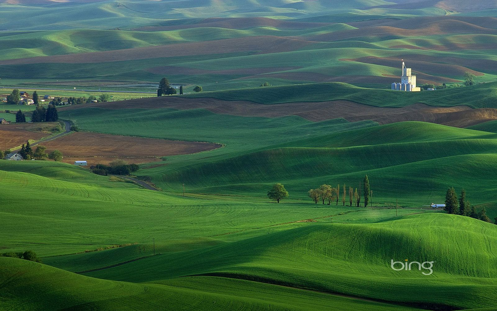 43 Best Free Bing Desktop Wallpapers Wallpaperaccess