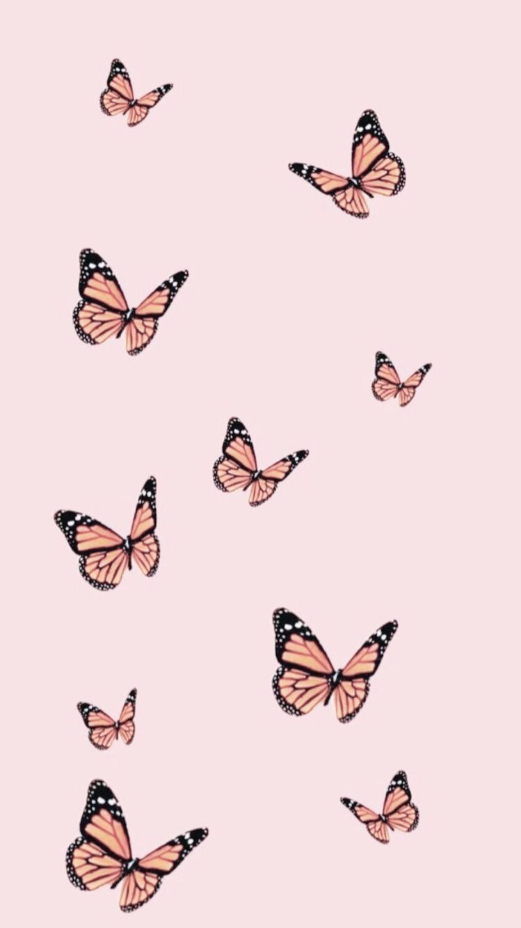 Máy tính xách tay thẩm mỹ hình nền con bướm 749x1333