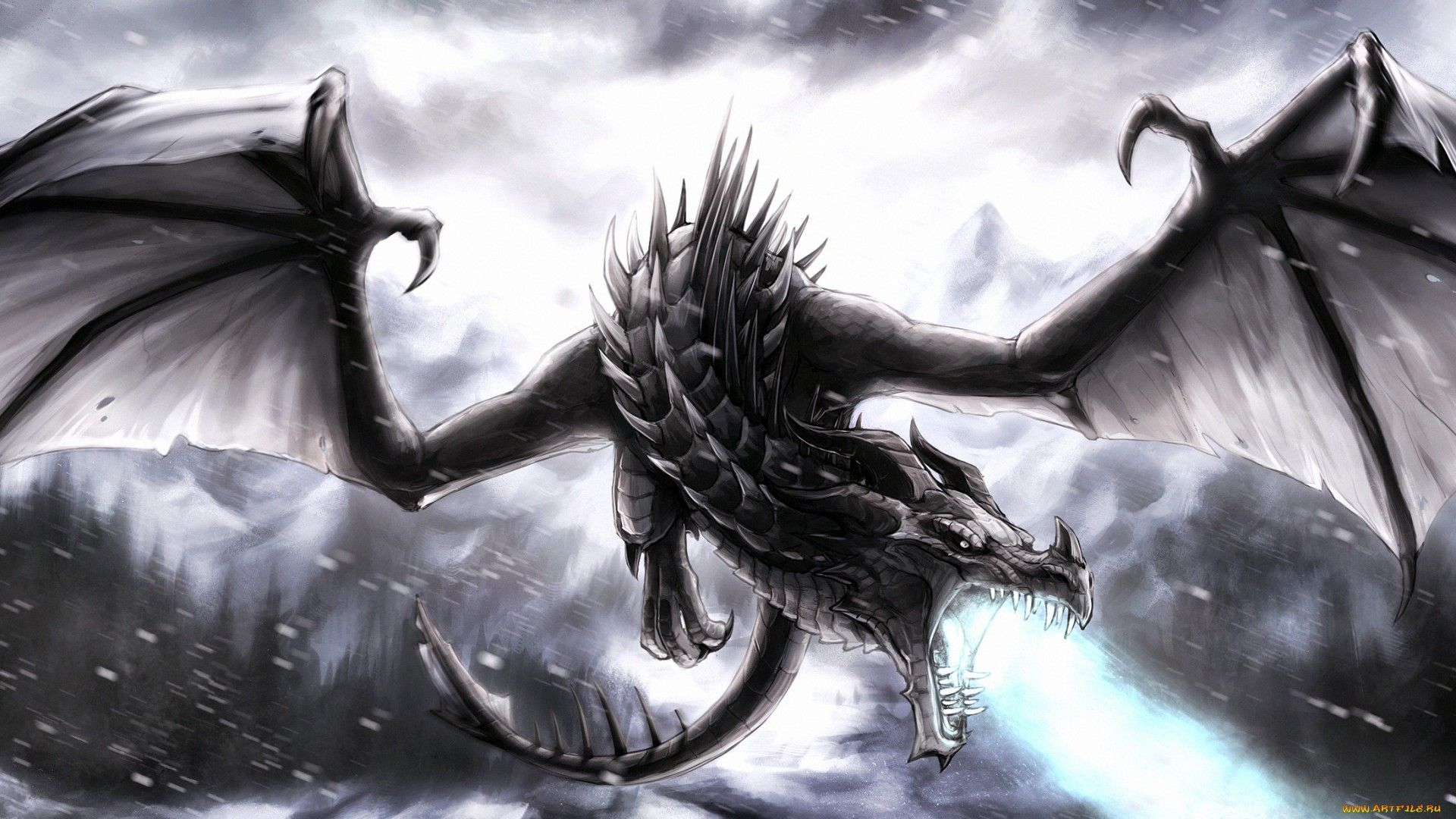 36 Best Free High Resolution Dragon Wallpapers