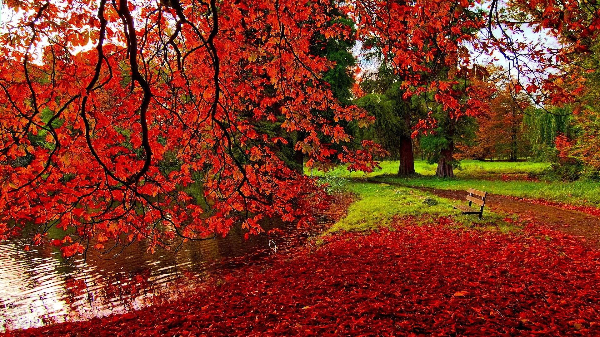 69 best free autumn wallpapers wallpaperaccess