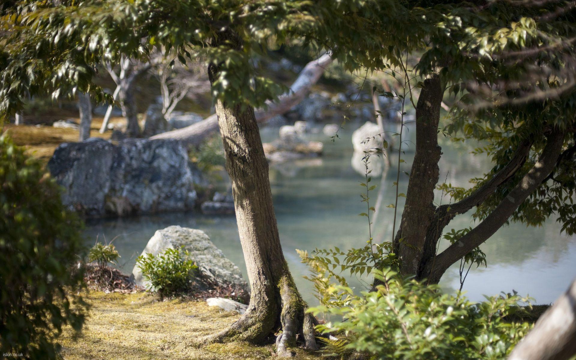 1920x1080 Zen Garden Wallpaper 6816595