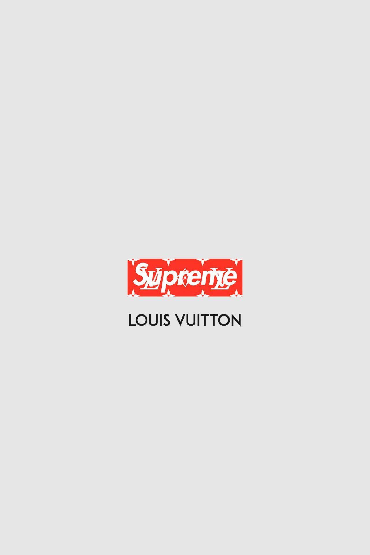 Gucci X Supreme Wallpapers Top Free Gucci X Supreme