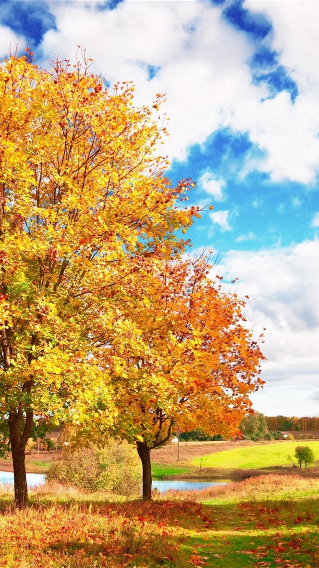 Autumn Iphone 6 Plus Wallpapers Top Free Autumn Iphone 6