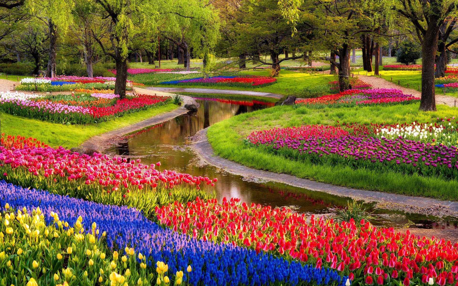 Flower Garden Desktop Wallpapers Top Free Flower Garden Desktop