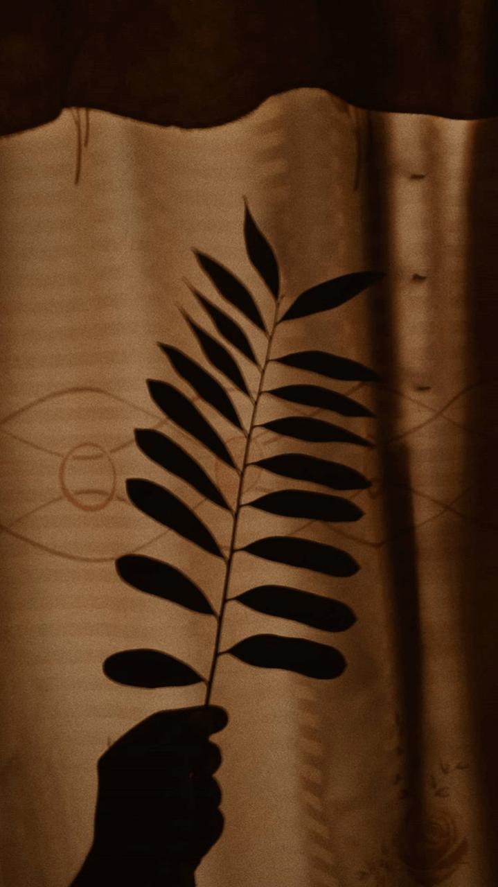 Dark Brown Aesthetic Wallpapers Top Free Dark Brown Aesthetic Backgrounds Wallpaperaccess
